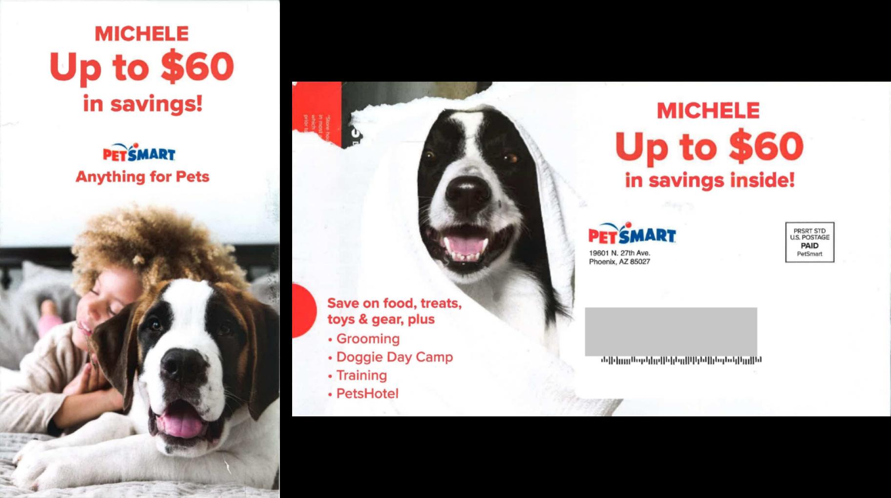 Petsmart 2019
